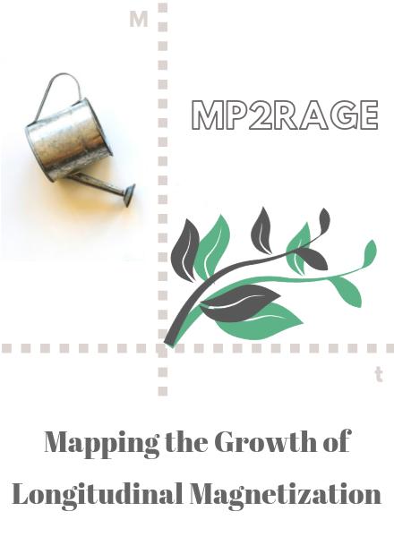 Relaxometry Series: MP2RAGE | qMRLab