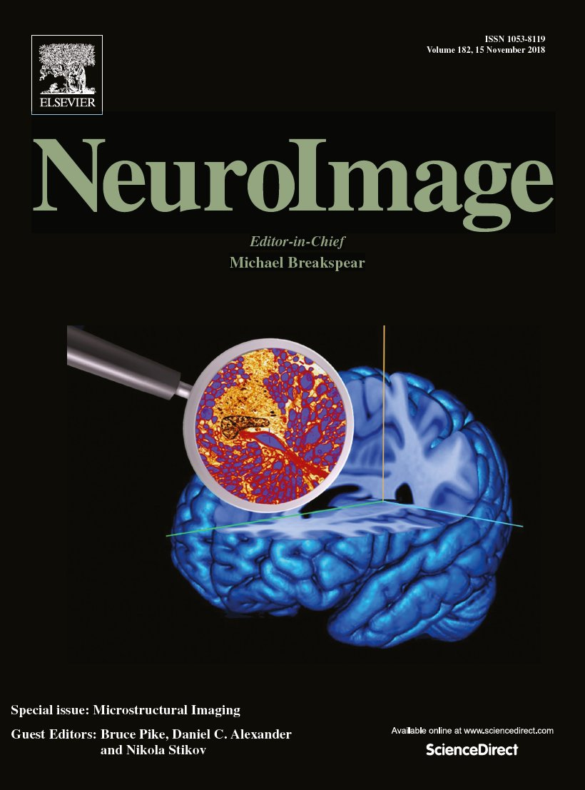 NeuroImage special issue on microstructure