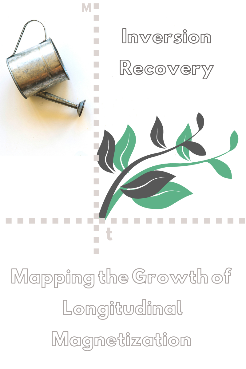 Relaxometry Series: Inversion Recovery