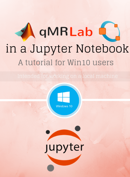 qMRLab in a Jupyter Notebook: A tutorial for Win10 users