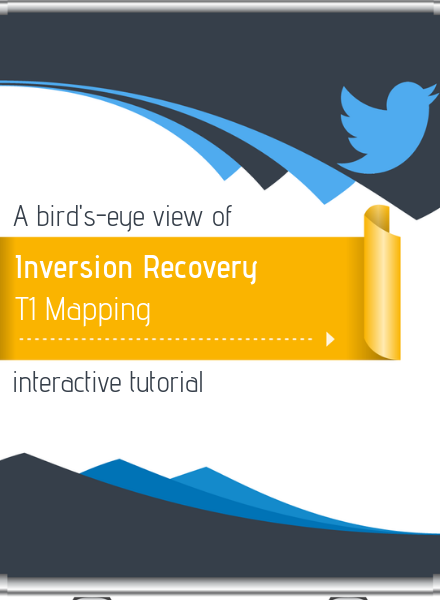 A bird's-eye view of the inversion recovery T1 mapping interactive tutorial