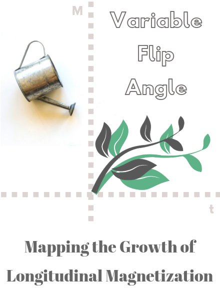 Relaxometry Series: Variable Flip Angle